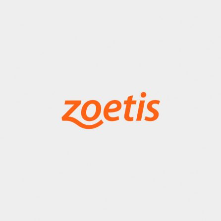 Zoetis job beirholm search